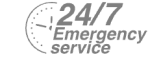 24/7 Emergency Service Pest Control in Earlsfield, SW18. Call Now! 020 8166 9746